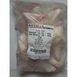 Rat sevré, petite taille 30-60 g 1kg