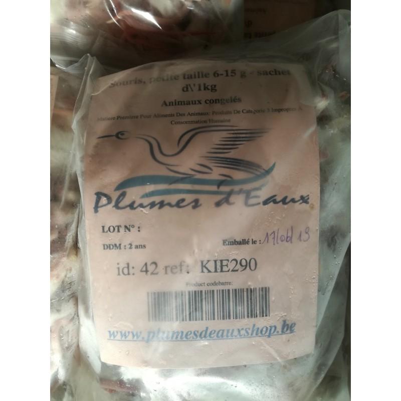 Souris, petite taille 6-15 g - sachet d'1kg